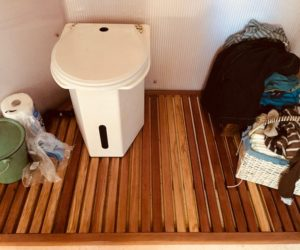 "HAVE YOU PUT DIRT IN THE TOILET LATELY? (AND OTHER THINGS YOU DON'T HEAR LIVING IN A ""NORMAL"" HOUSE)"